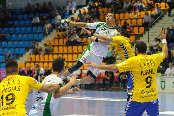 Handball Tippspiel